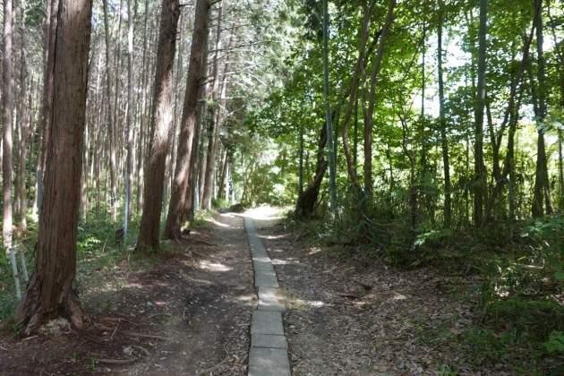 inari path