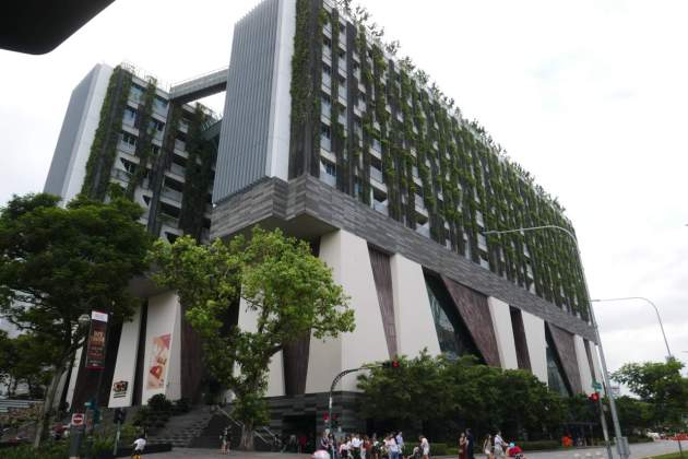 sg university
