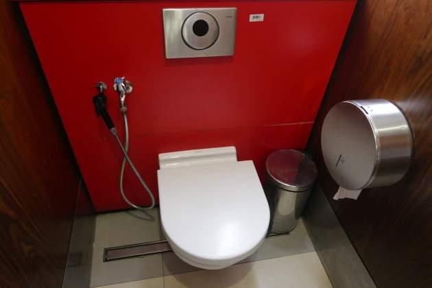 toilet dual.JPG